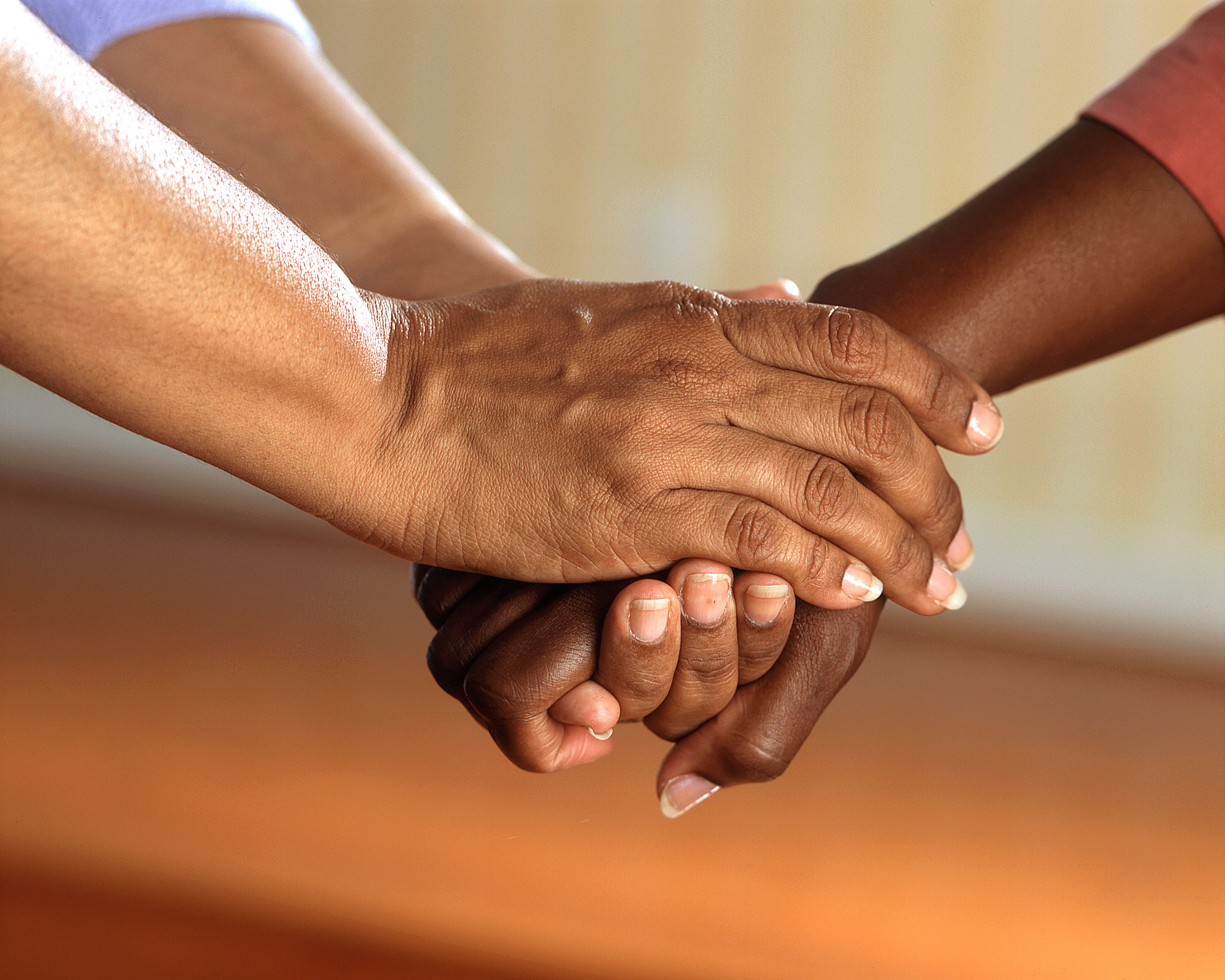 Clasped Hands- With Distinction Foundation - Volunteer
